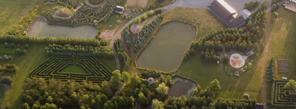 aerial view of mazes